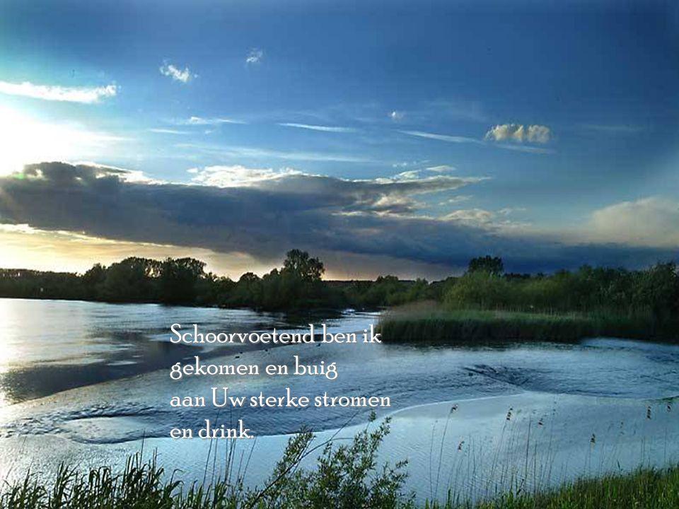 Mijn rivier is geen afstand tussen Mij en jou. Het is Mijn hart wat overstroomt en wegen zoekt, zich in bochten wringen moet, met pijn en moeite rotse