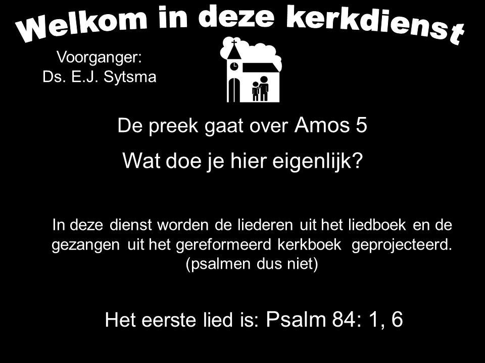 De preek gaat over Amos 5 Wat doe je hier eigenlijk? Het eerste lied is: Psalm 84: 1, 6 In deze dienst worden de liederen uit het liedboek en de gezan