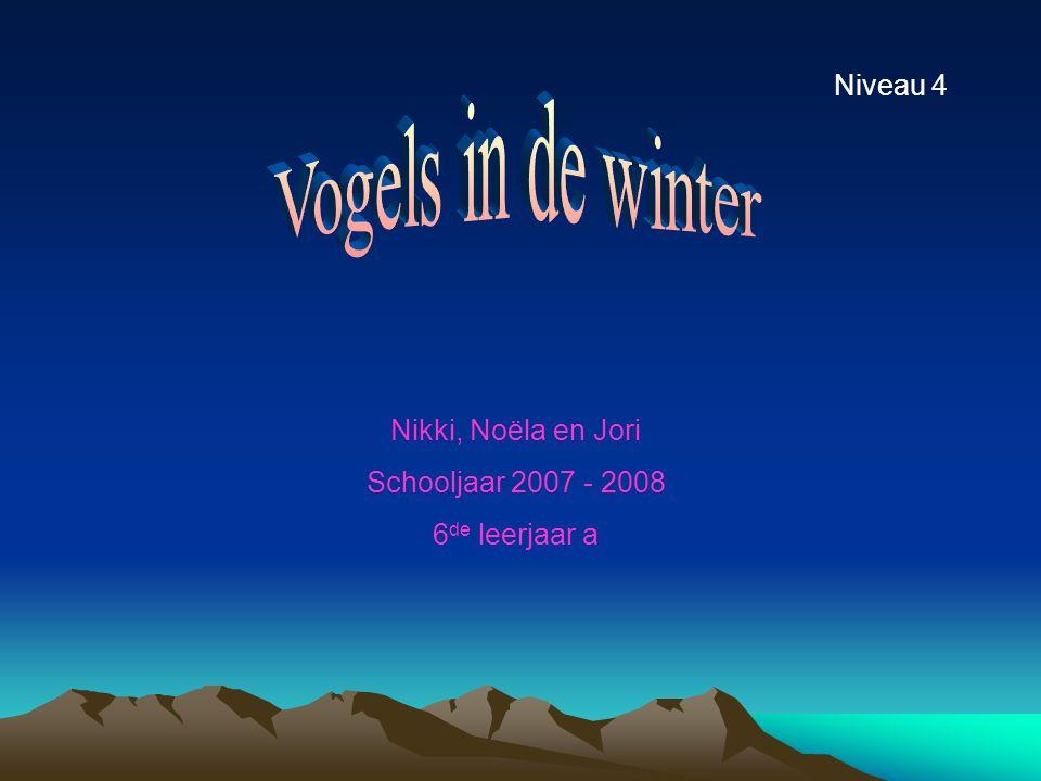 Nikki, Noëla en Jori Schooljaar 2007 - 2008 6 de leerjaar a Niveau 4