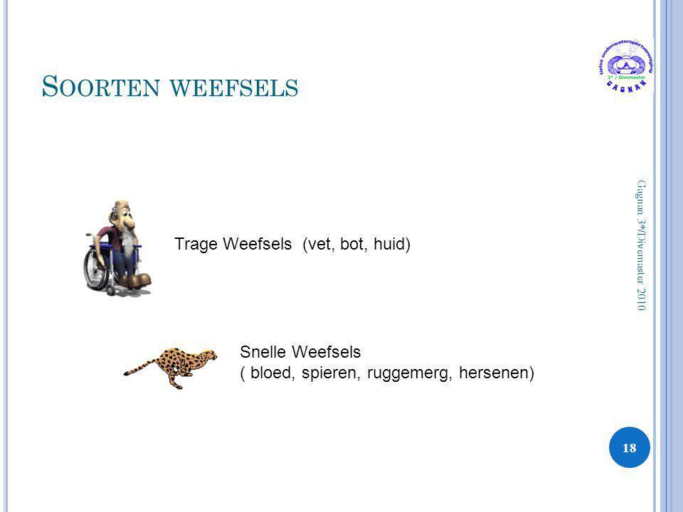 S OORTEN WEEFSELS 18 Gagnan 3*/Divemaster 2010 Trage Weefsels (vet, bot, huid) Snelle Weefsels ( bloed, spieren, ruggemerg, hersenen)