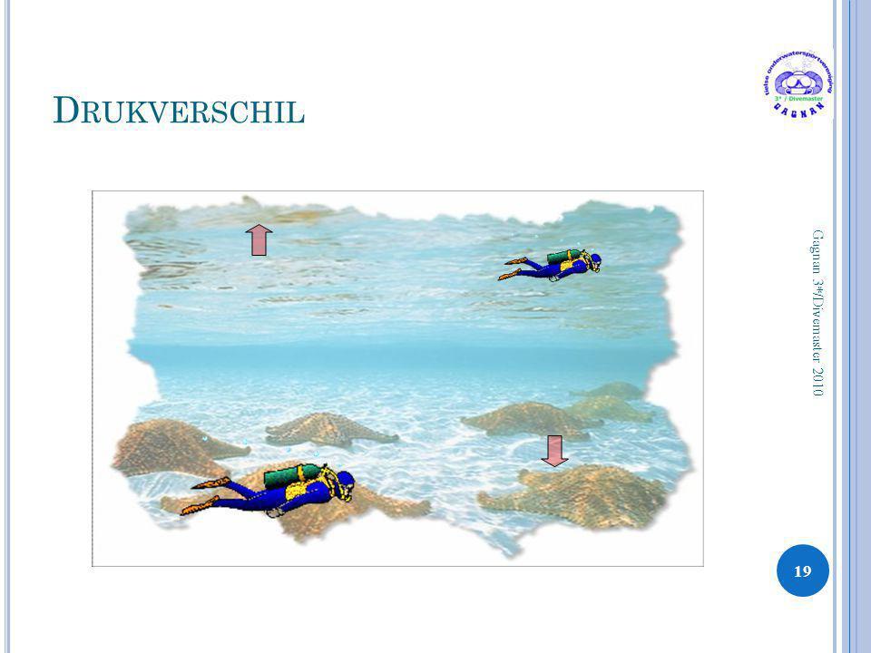 D RUKVERSCHIL 19 Gagnan 3*/Divemaster 2010
