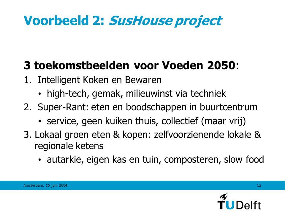 Amsterdam, 16 juni 200411 Voorbeeld 1: Novel Protein Foods DTO-programma Toekomstbeeld 2040: 40% vlees vervangen door Novel Protein Foods Noodzakelijke veranderingen (CST-format): • C: Consument & Maatschappelijke Acceptatie, andere rol vlees, consumentenvoordelen • S: Kleinere vleessector (flankerend beleid), nieuwe NPF-sector • T: Nieuwe kennis en technologie voor producten, systemen, en ketens