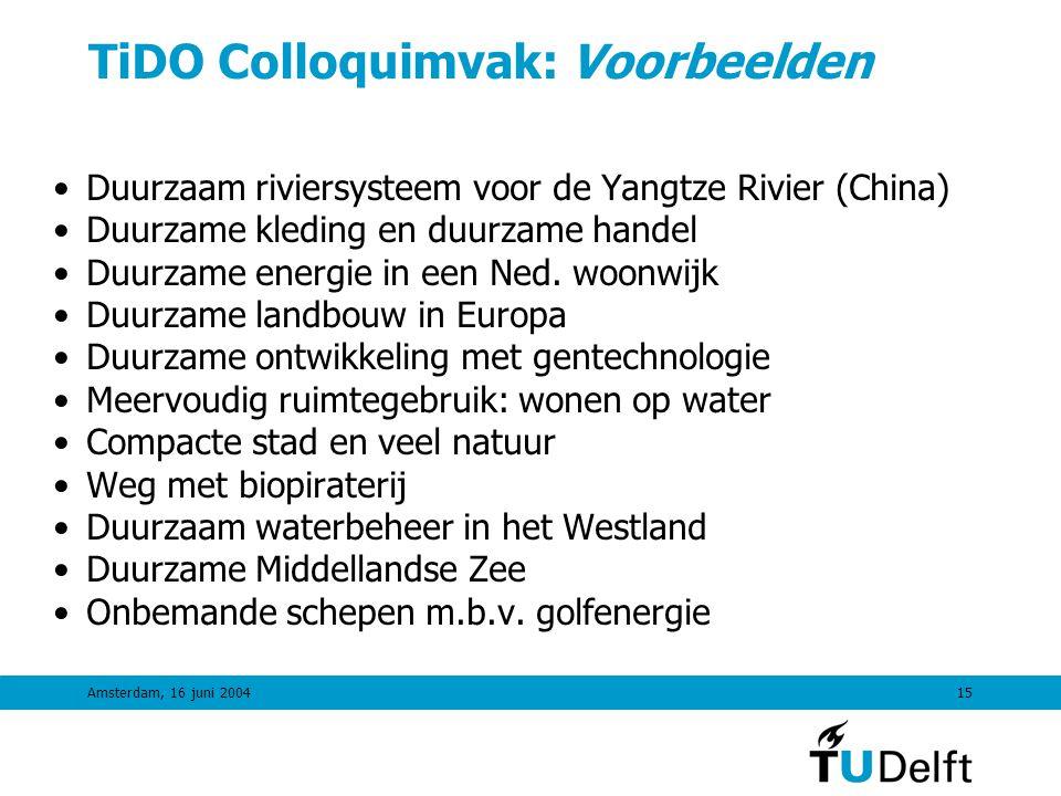 Amsterdam, 16 juni 200414 Backcasting: TiDO Colloquimvak opzet •A: bootweek met orientatie, gastlezingen, onderwerpkeuze •B: DTO-week met backcasting en multidisciplinair project •Inleidende lezing over backcasting en DTO •Workshop-sessie (dagdeel) voor toekomstbeeld •Workshop-sessie (dagdeel) voor backcasting •Lezing over implementatie en maatschappelijke dynamiek •Workshops en projectwerk in groepen 4-8 •Groepen kiezen eigen onderwerp en zoeken stakeholders •Eindpresentaties met aanwezigheid experts/stakeholders