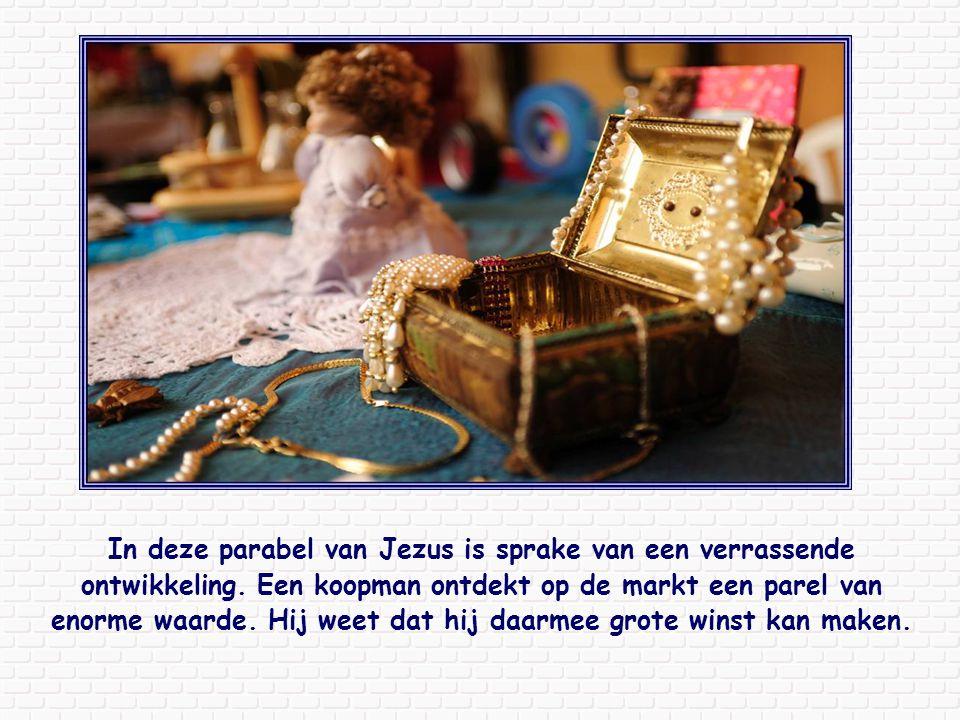 Ook kenden zij de Schrift, die de wijsheid van het geloof als zo kostbaar beschouwt dat deze zelfs niet met de kostbaarste edelsteen ( Wijsheid 7,9 ) te vergelijken is.