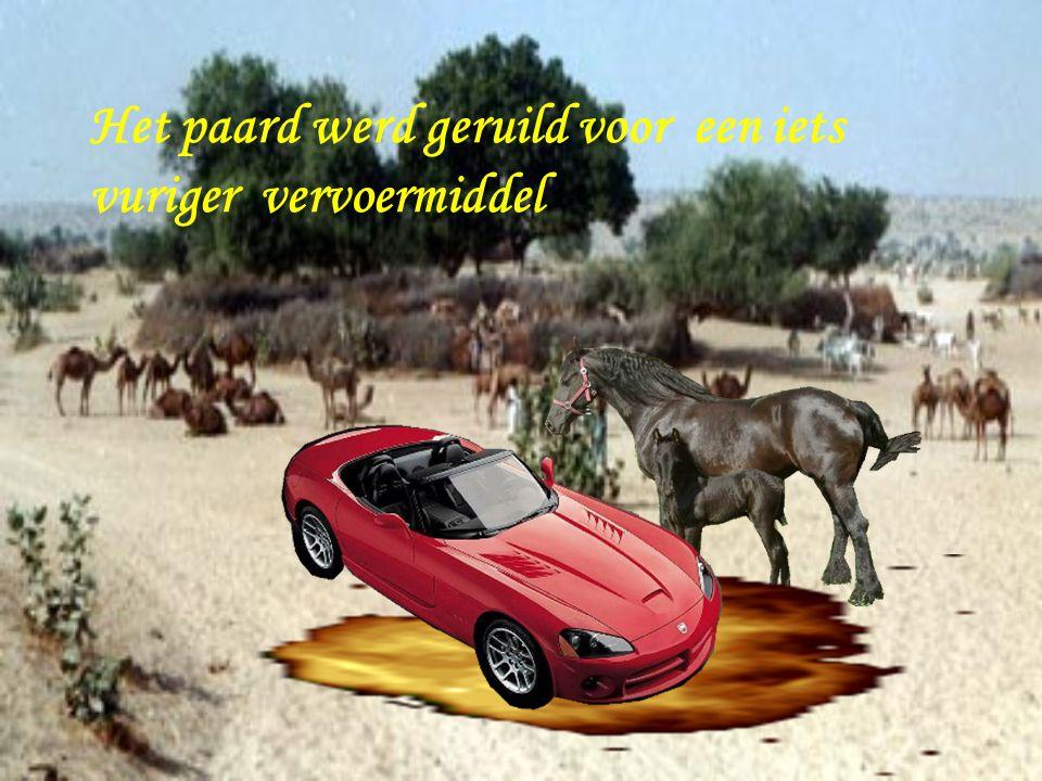 De kameel werd vervangen door een iets comfortabeler vervoermiddel
