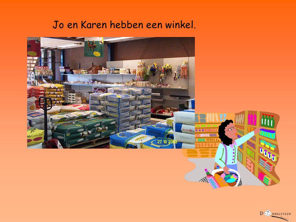 Jo en Karen hebben een winkel.