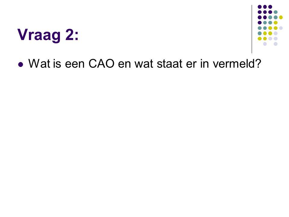 Vraag 2:  Wat is een CAO en wat staat er in vermeld?