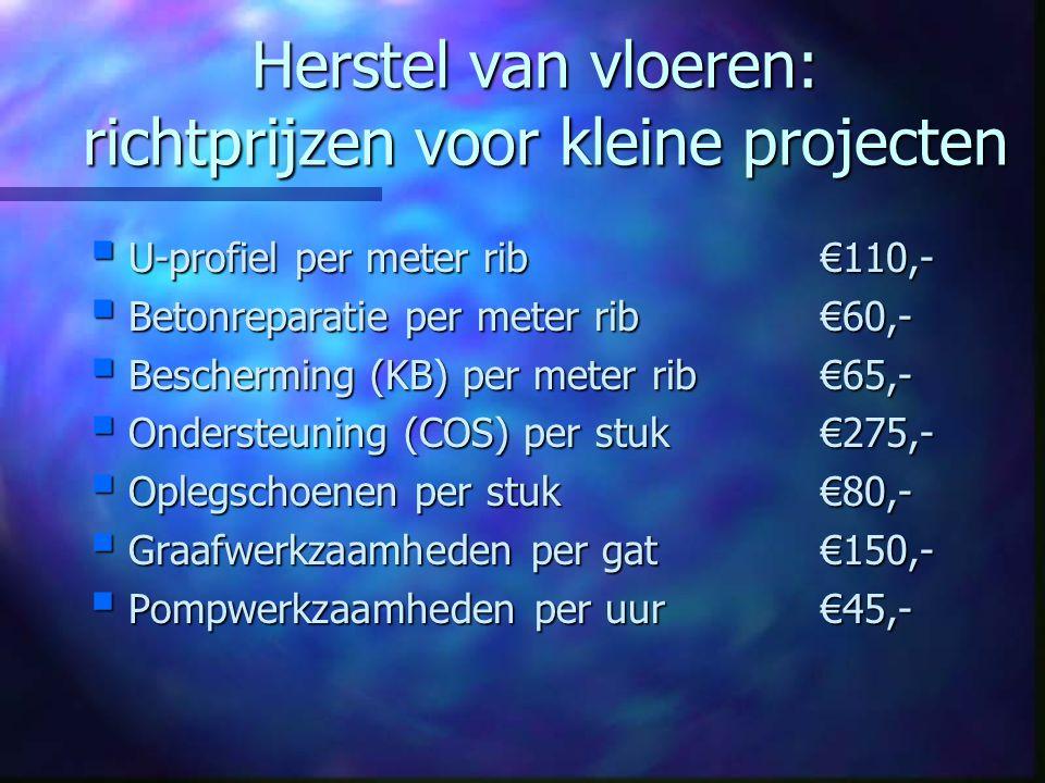 Invloedsfactoren prijsvorming  Projectomvang  Elementen met schade –Aantal in vloer –Overspanningslengte –Lengte schade  Belemmeringen –Bescherming –Opleggingen (COS / U-profiel) –Leidingen (COS / U-profiel) –Uitvoering (toegankelijkheid)