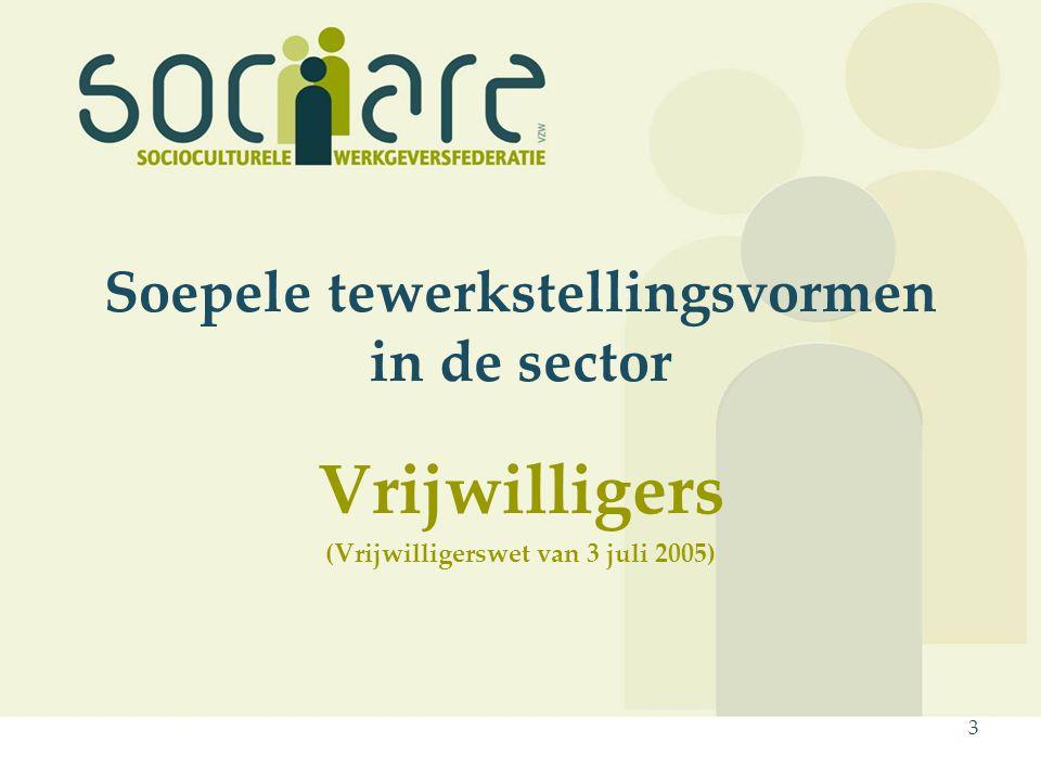 3 Soepele tewerkstellingsvormen in de sector Vrijwilligers (Vrijwilligerswet van 3 juli 2005)