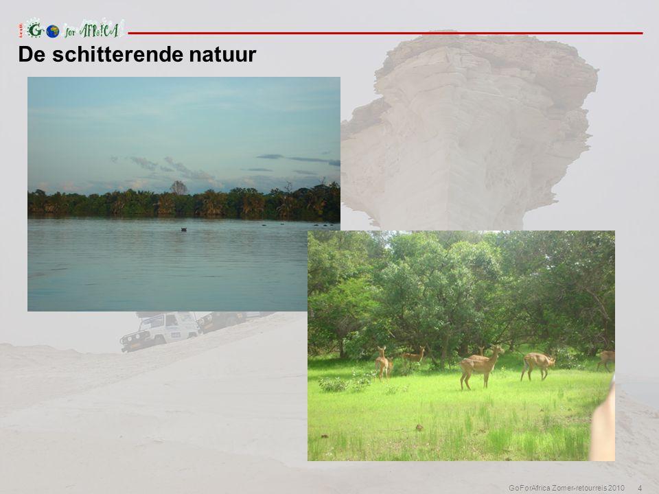4 GoForAfrica Zomer-retourreis 2010 De schitterende natuur