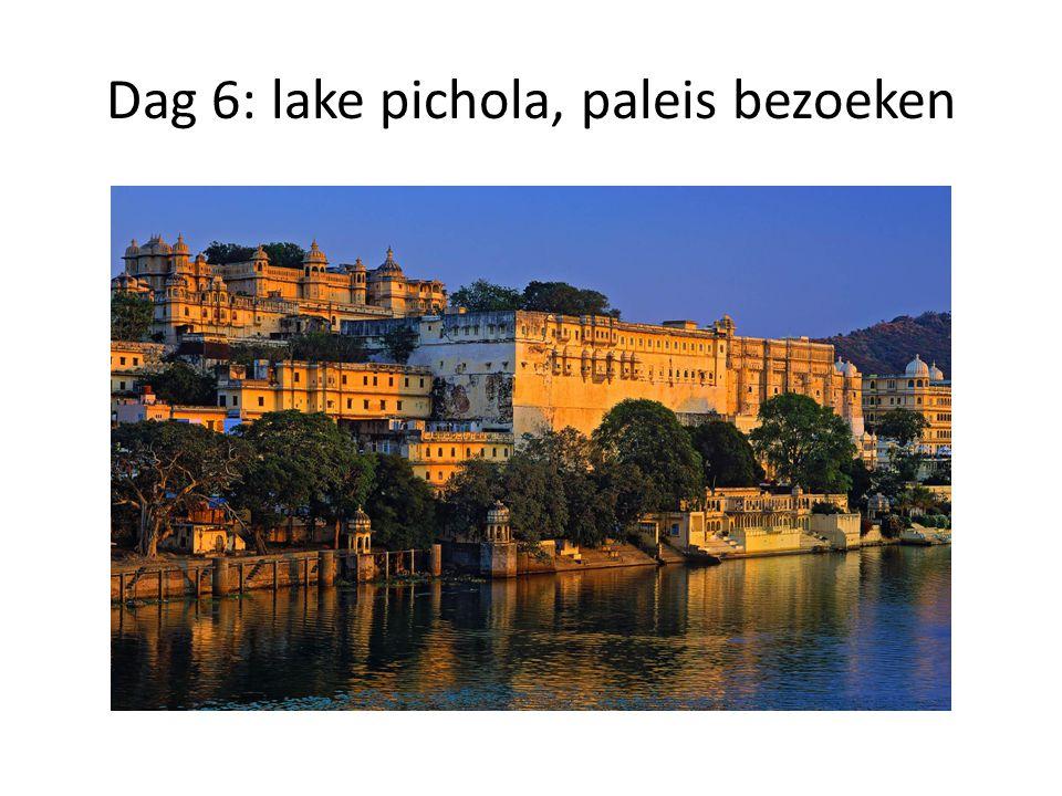Dag 6: lake pichola, paleis bezoeken