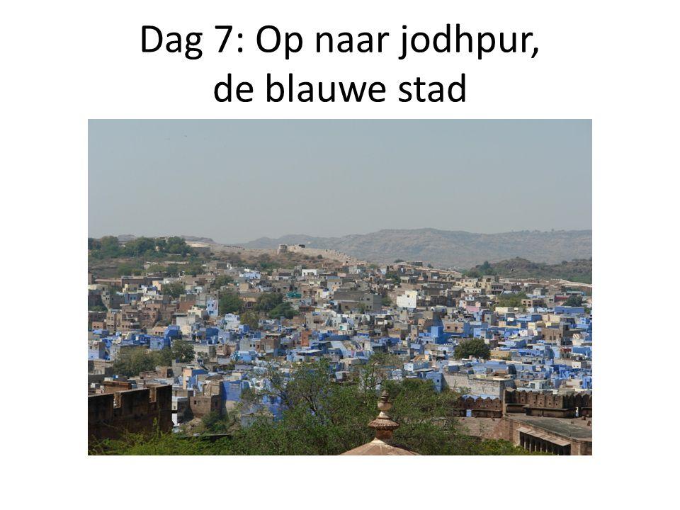 Dag 7: Op naar jodhpur, de blauwe stad