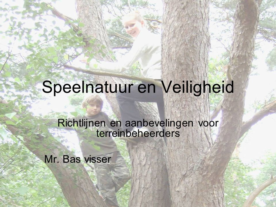 Speelnatuur en Veiligheid Richtlijnen en aanbevelingen voor terreinbeheerders Mr. Bas visser