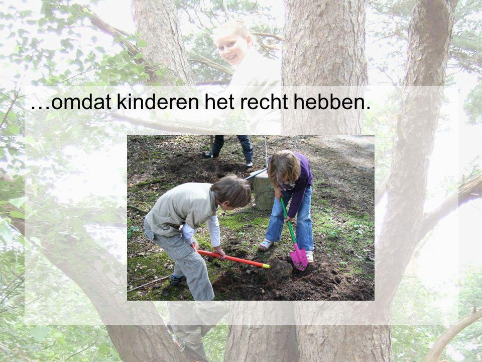 Hoe te werken •Of de ontwikkeling van het kind bepaalt de norm voor verantwoord veilig spelen.