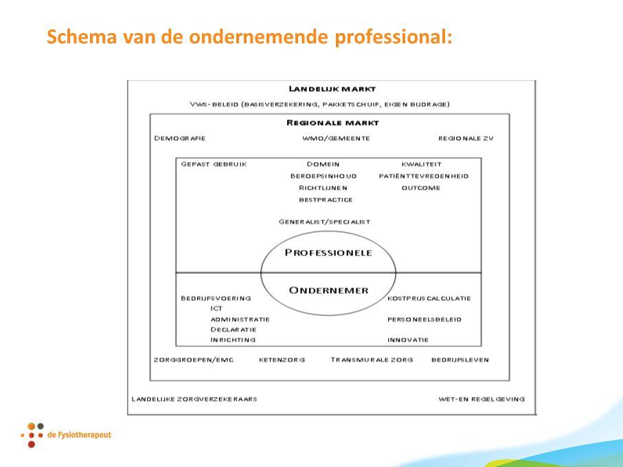 Schema van de ondernemende professional: