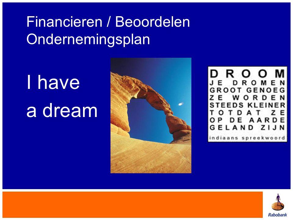Financieren / Beoordelen Ondernemingsplan I have a dream