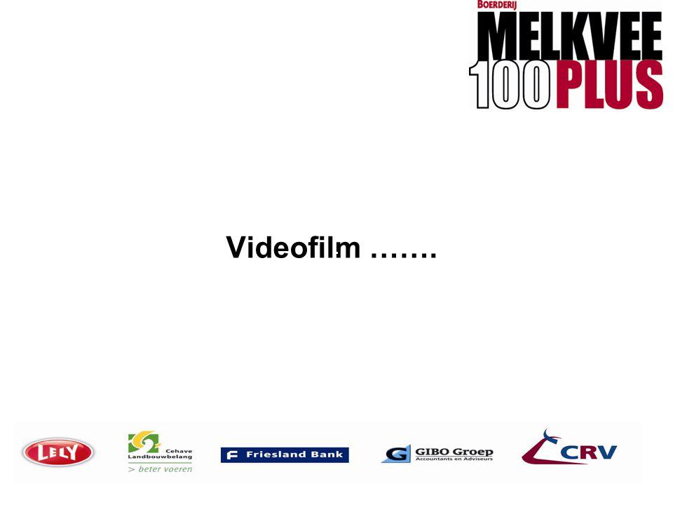 Videofilm …….