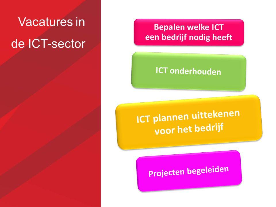 Vacatures in de ICT-sector ICT onderhouden Bepalen welke ICT een bedrijf nodig heeft ICT plannen uittekenen voor het bedrijf Projecten begeleiden