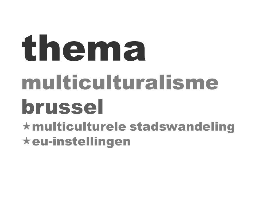thema multiculturalisme brussel  multiculturele stadswandeling  eu-instellingen