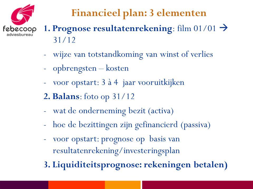 Financieel plan: 3 elementen 1. Prognose resultatenrekening: film 01/01  31/12 -wijze van totstandkoming van winst of verlies -opbrengsten – kosten -