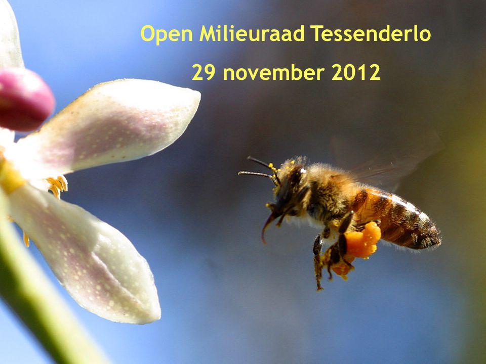 1 Open Milieuraad Tessenderlo 29 november 2012