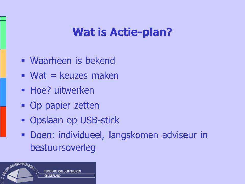 Wat is Actie-plan?  Waarheen is bekend  Wat = keuzes maken  Hoe? uitwerken  Op papier zetten  Opslaan op USB-stick  Doen: individueel, langskome