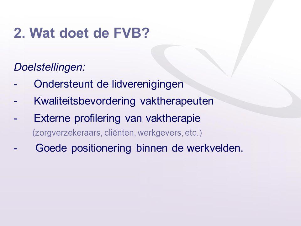 2. Wat doet de FVB? Doelstellingen: -Ondersteunt de lidverenigingen -Kwaliteitsbevordering vaktherapeuten -Externe profilering van vaktherapie (zorgve