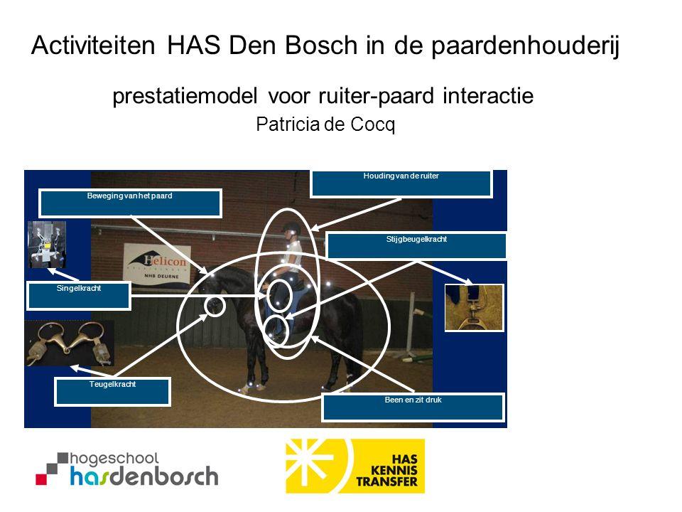 Activiteiten HAS Den Bosch in de paardenhouderij Beweging van het paard Houding van de ruiter Teugelkracht Been en zit druk Stijgbeugelkracht Singelkr