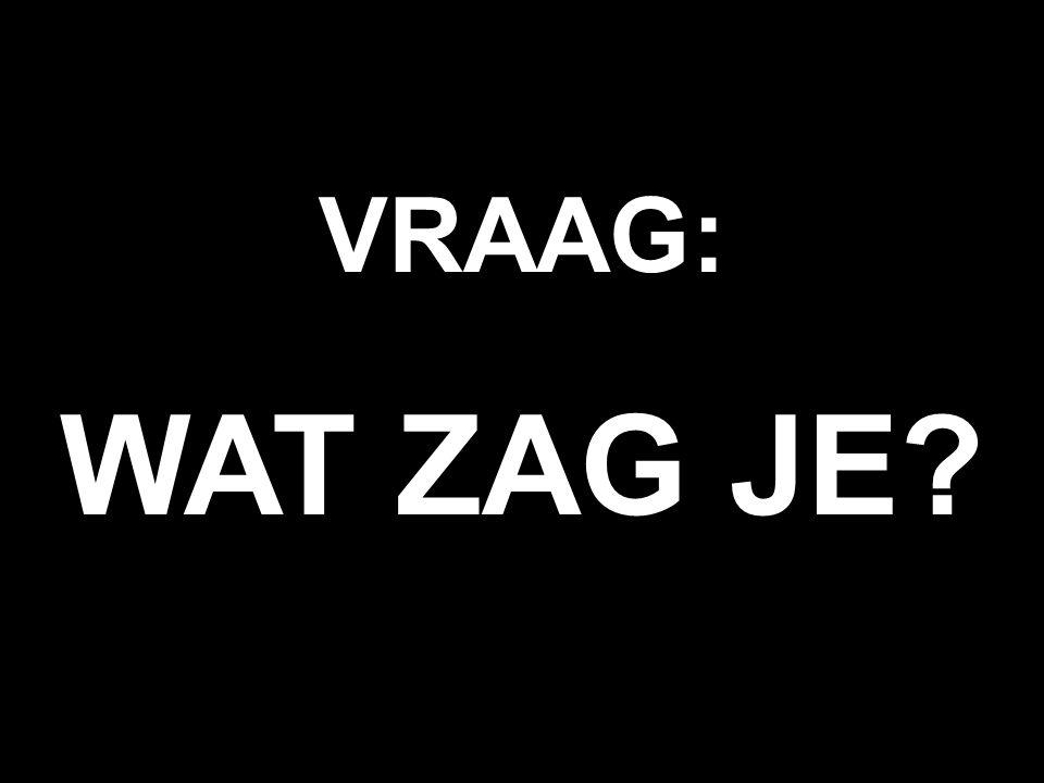 VRAAG: WAT ZAG JE