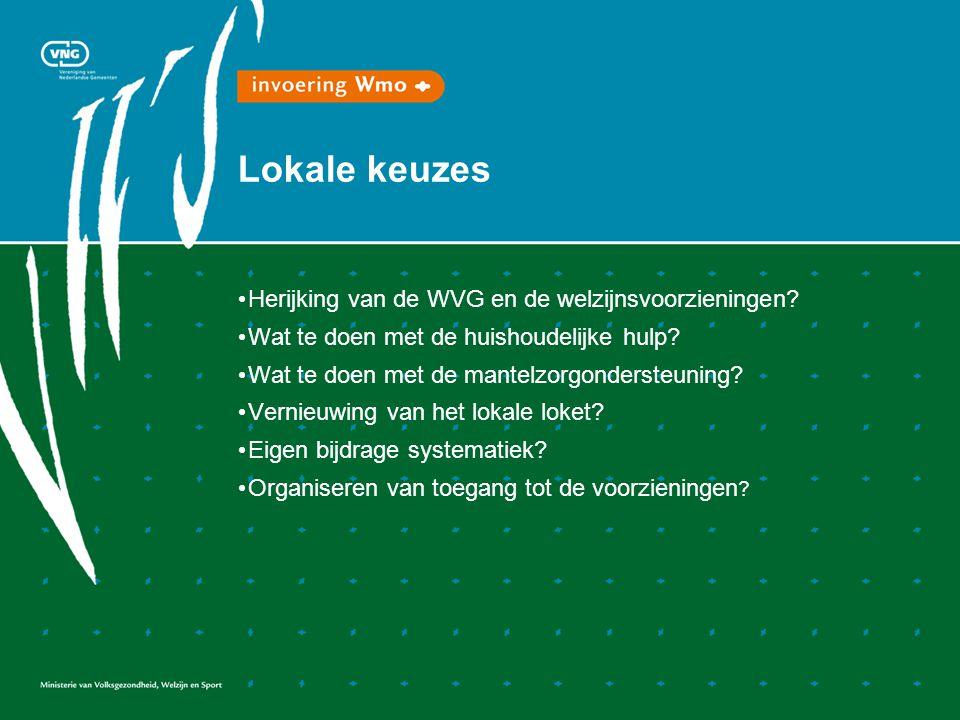 Lokale keuzes • Herijking van de WVG en de welzijnsvoorzieningen? • Wat te doen met de huishoudelijke hulp? • Wat te doen met de mantelzorgondersteuni