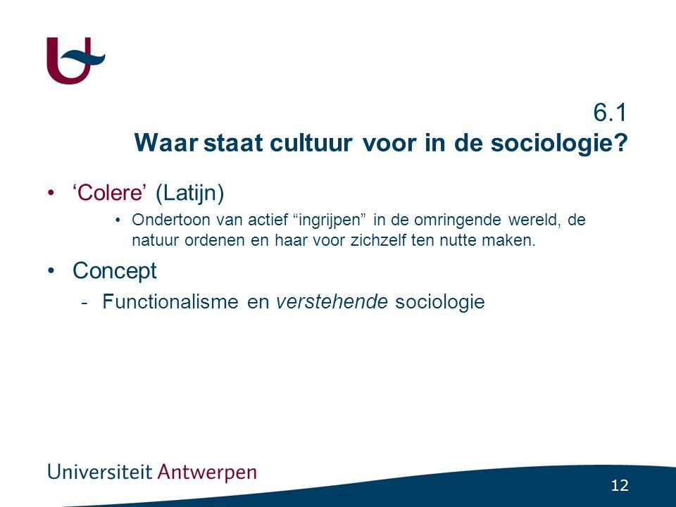 12 6.1 Waar staat cultuur voor in de sociologie.