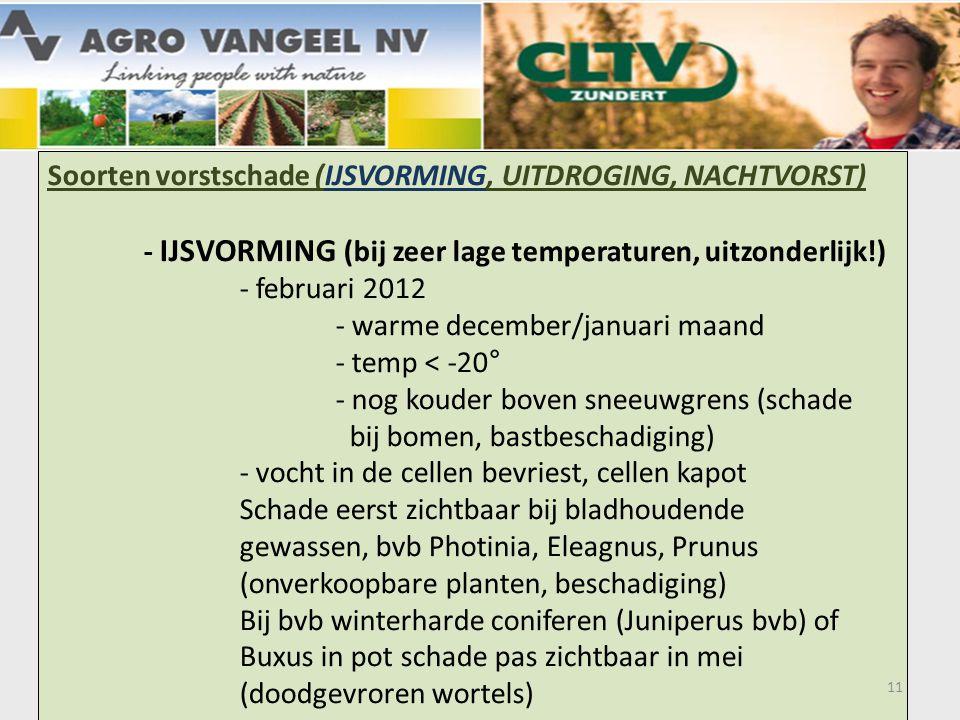 Soorten vorstschade (IJSVORMING, UITDROGING, NACHTVORST) - IJSVORMING (bij zeer lage temperaturen, uitzonderlijk!) - februari 2012 - warme december/januari maand - temp < -20° - nog kouder boven sneeuwgrens (schade bij bomen, bastbeschadiging) - vocht in de cellen bevriest, cellen kapot Schade eerst zichtbaar bij bladhoudende gewassen, bvb Photinia, Eleagnus, Prunus (onverkoopbare planten, beschadiging) Bij bvb winterharde coniferen (Juniperus bvb) of Buxus in pot schade pas zichtbaar in mei (doodgevroren wortels) 11