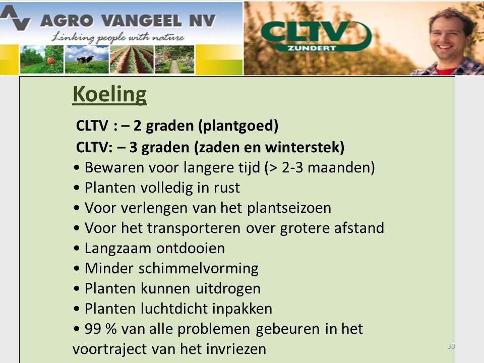 Koeling CLTV : – 2 graden (plantgoed) CLTV: – 3 graden (zaden en winterstek) • Bewaren voor langere tijd (> 2-3 maanden) • Planten volledig in rust • Voor verlengen van het plantseizoen • Voor het transporteren over grotere afstand • Langzaam ontdooien • Minder schimmelvorming • Planten kunnen uitdrogen • Planten luchtdicht inpakken • 99 % van alle problemen gebeuren in het voortraject van het invriezen 30