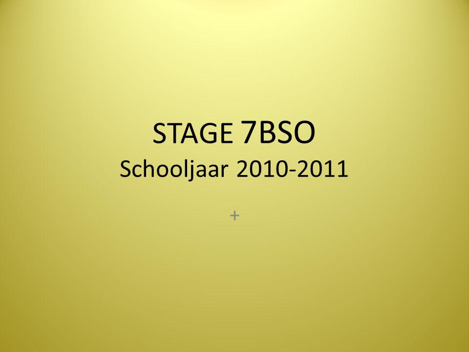 STAGE 7BSO Schooljaar 2010-2011 +