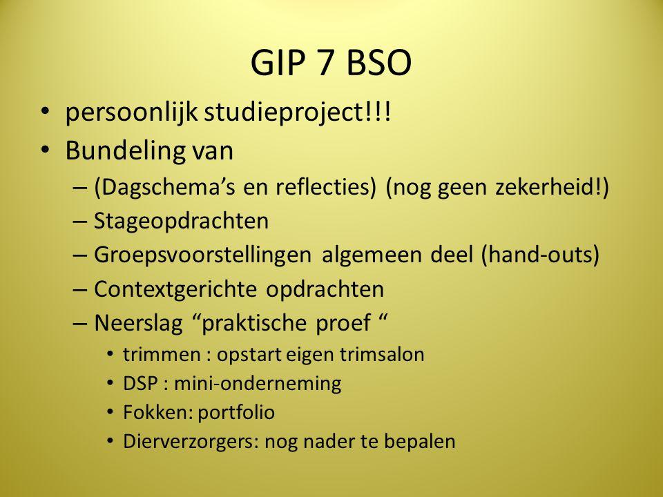 GIP 7 BSO • persoonlijk studieproject!!! • Bundeling van – (Dagschema's en reflecties) (nog geen zekerheid!) – Stageopdrachten – Groepsvoorstellingen