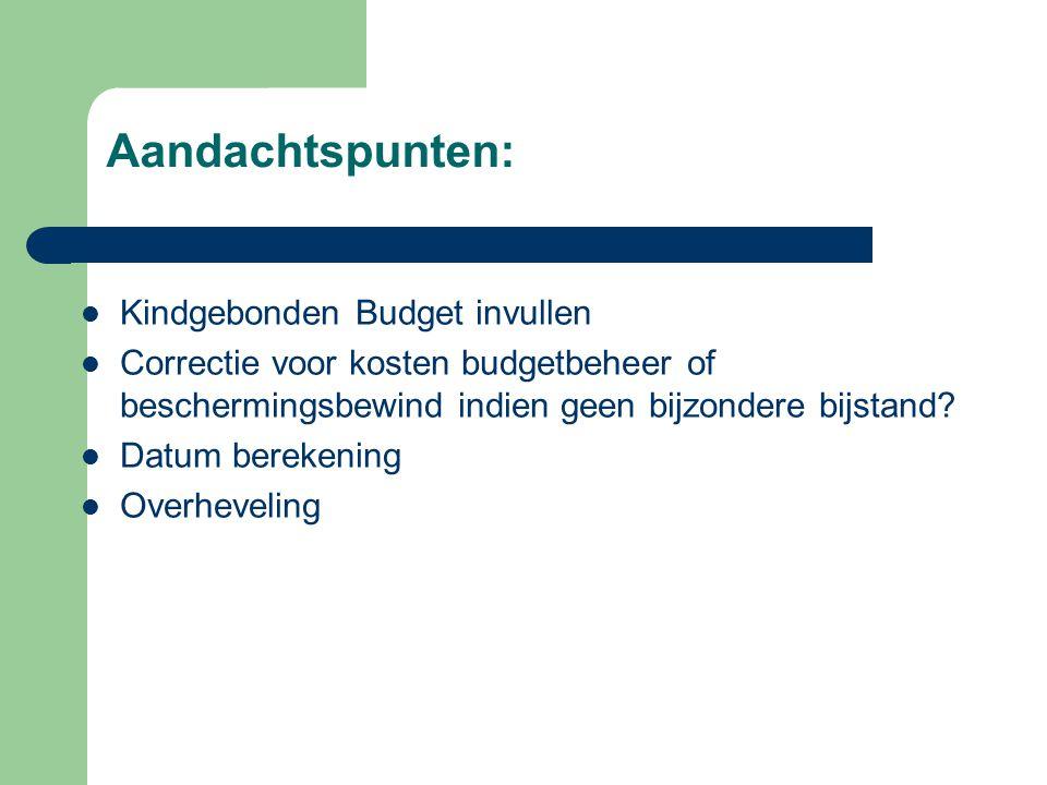 Aandachtspunten:  Kindgebonden Budget invullen  Correctie voor kosten budgetbeheer of beschermingsbewind indien geen bijzondere bijstand?  Datum be