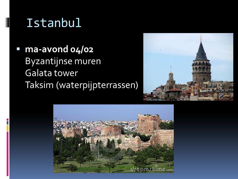  ma-avond 04/02 Byzantijnse muren Galata tower Taksim (waterpijpterrassen)