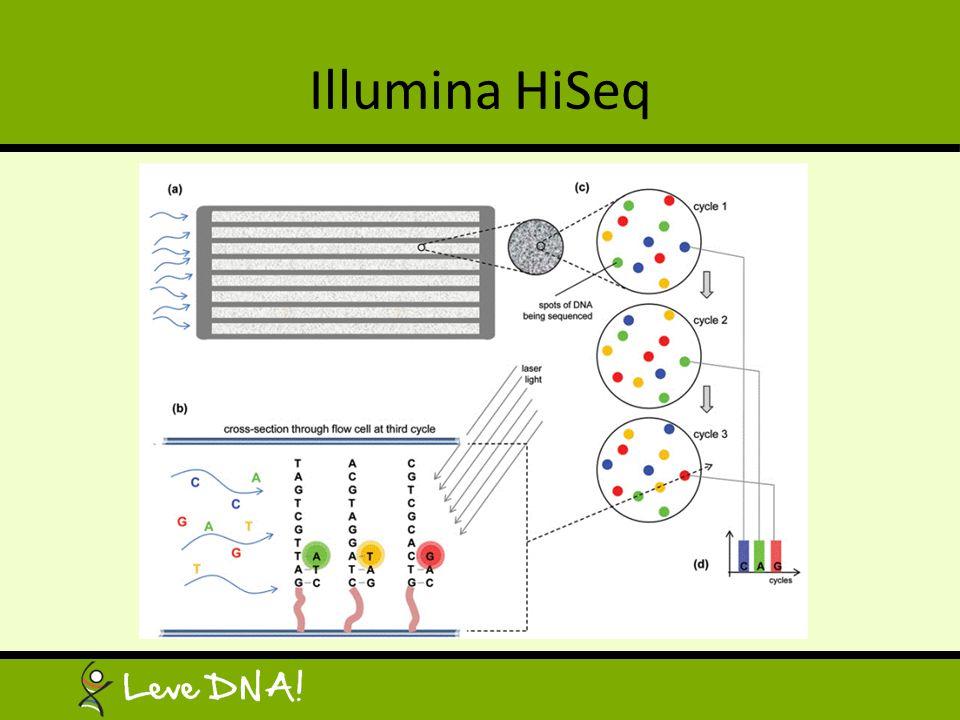 Illumina HiSeq
