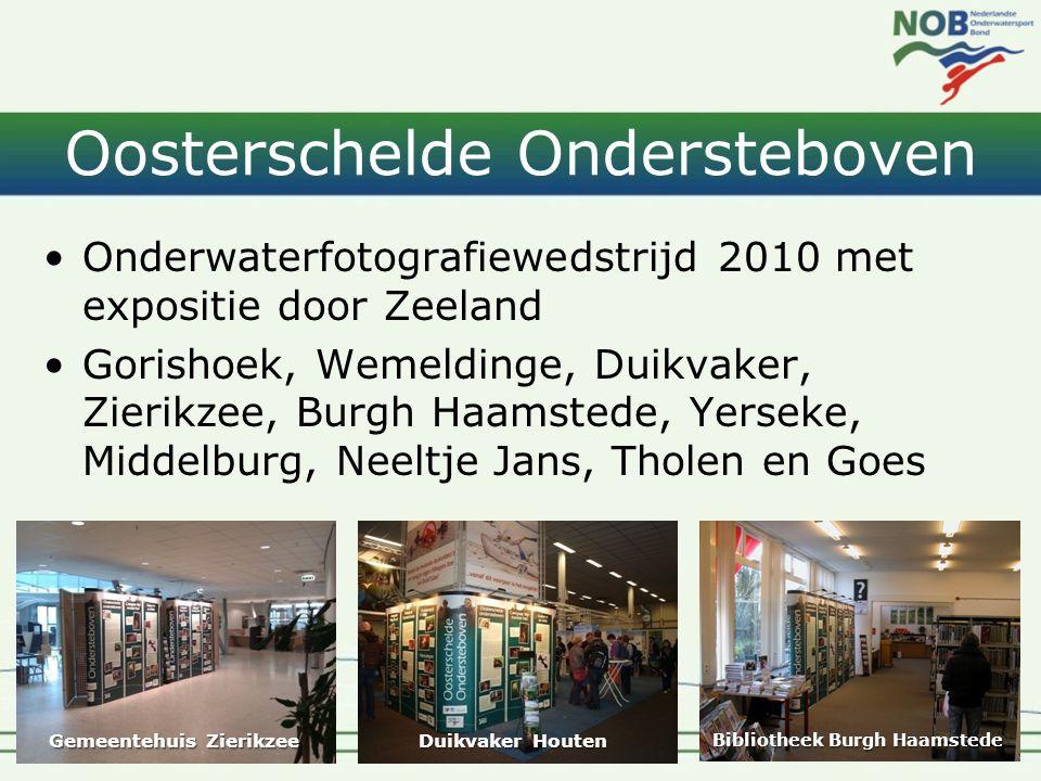 Oosterschelde Ondersteboven •Onderwaterfotografiewedstrijd 2010 met expositie door Zeeland •Gorishoek, Wemeldinge, Duikvaker, Zierikzee, Burgh Haamste