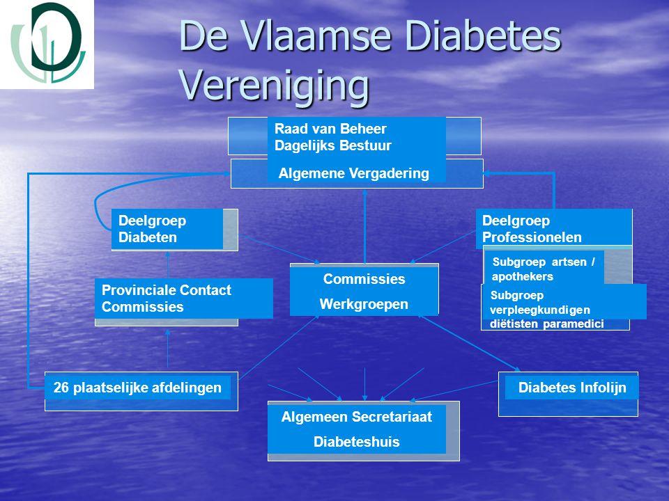 De Vlaamse Diabetes Vereniging Raad van Beheer Dagelijks Bestuur Deelgroep Diabeten Deelgroep Professionelen Commissies Werkgroepen 26 plaatselijke af