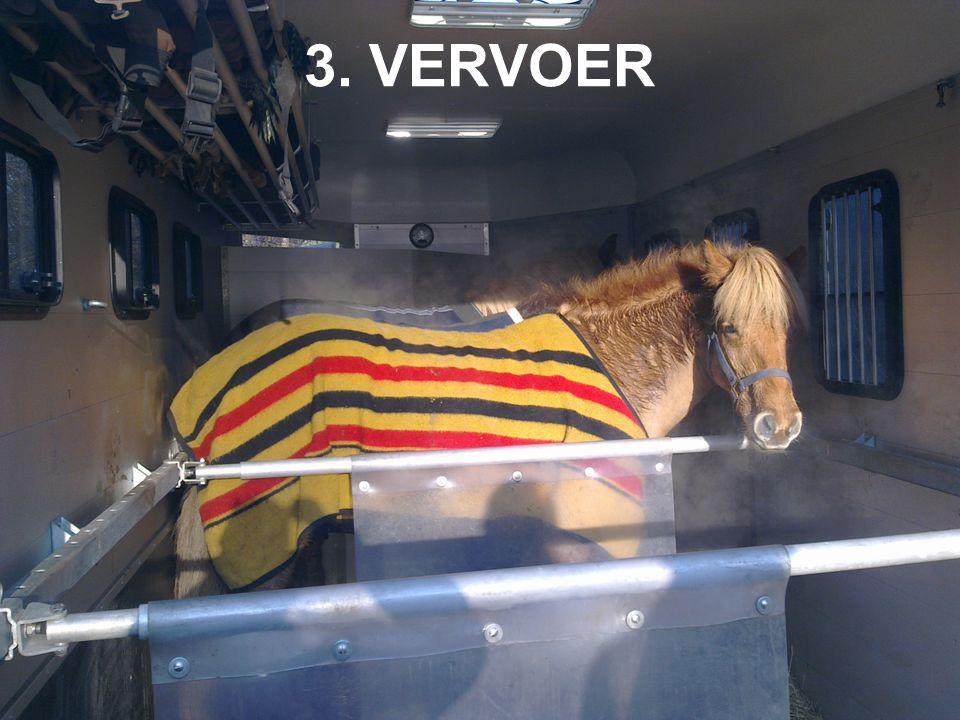 3. VERVOER