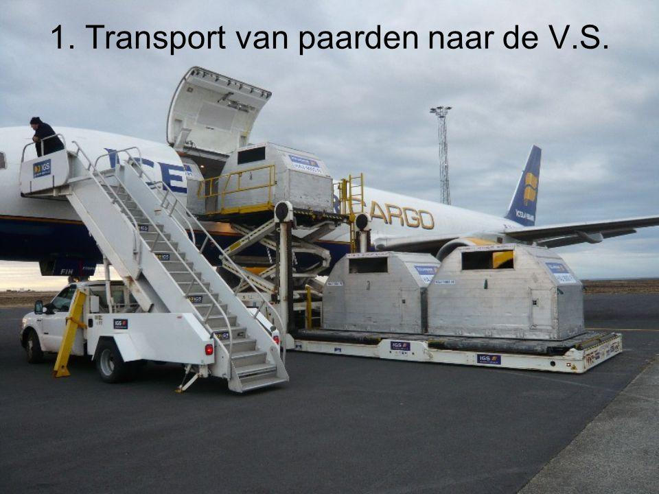 1. Transport van paarden naar de V.S.