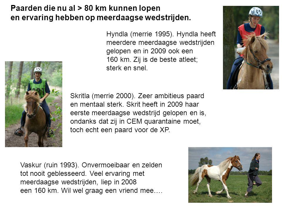 Skritla (merrie 2000). Zeer ambitieus paard en mentaal sterk. Skrit heeft in 2009 haar eerste meerdaagse wedstrijd gelopen en is, ondanks dat zij in C