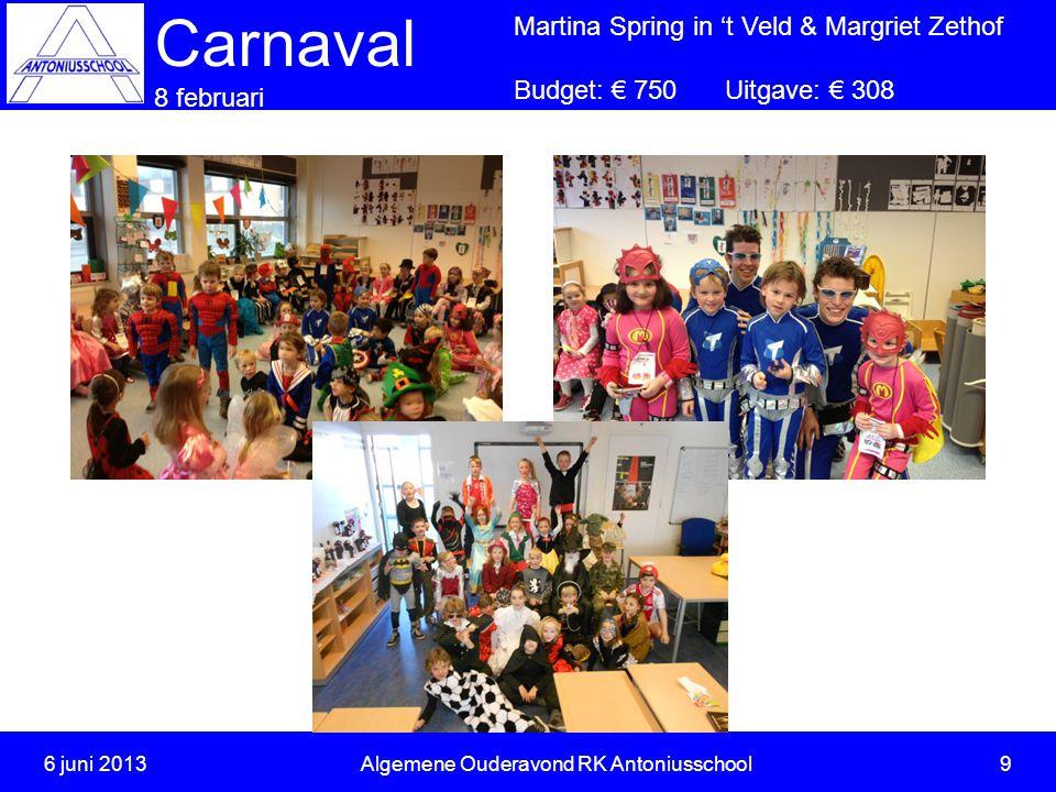 Carnaval 8 februari Martina Spring in 't Veld & Margriet Zethof Budget: € 750Uitgave: € 308 6 juni 2013Algemene Ouderavond RK Antoniusschool 9