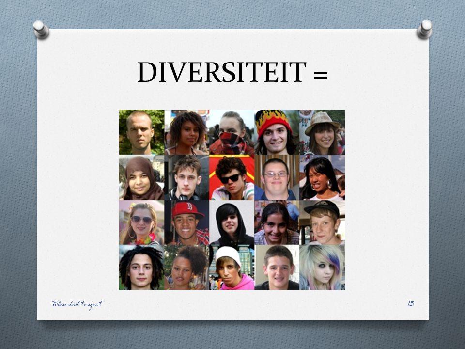 DIVERSITEIT = Blended traject13