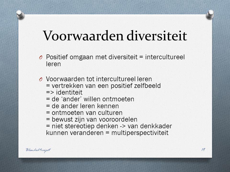 Voorwaarden diversiteit O Positief omgaan met diversiteit = intercultureel leren O Voorwaarden tot intercultureel leren = vertrekken van een positief zelfbeeld => identiteit = de 'ander' willen ontmoeten = de ander leren kennen = ontmoeten van culturen = bewust zijn van vooroordelen = niet stereotiep denken -> van denkkader kunnen veranderen = multiperspectiviteit Blended traject19