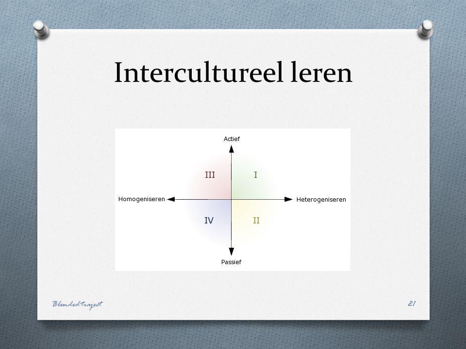 Intercultureel leren Blended traject21