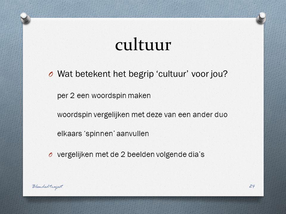 cultuur O Wat betekent het begrip 'cultuur' voor jou.
