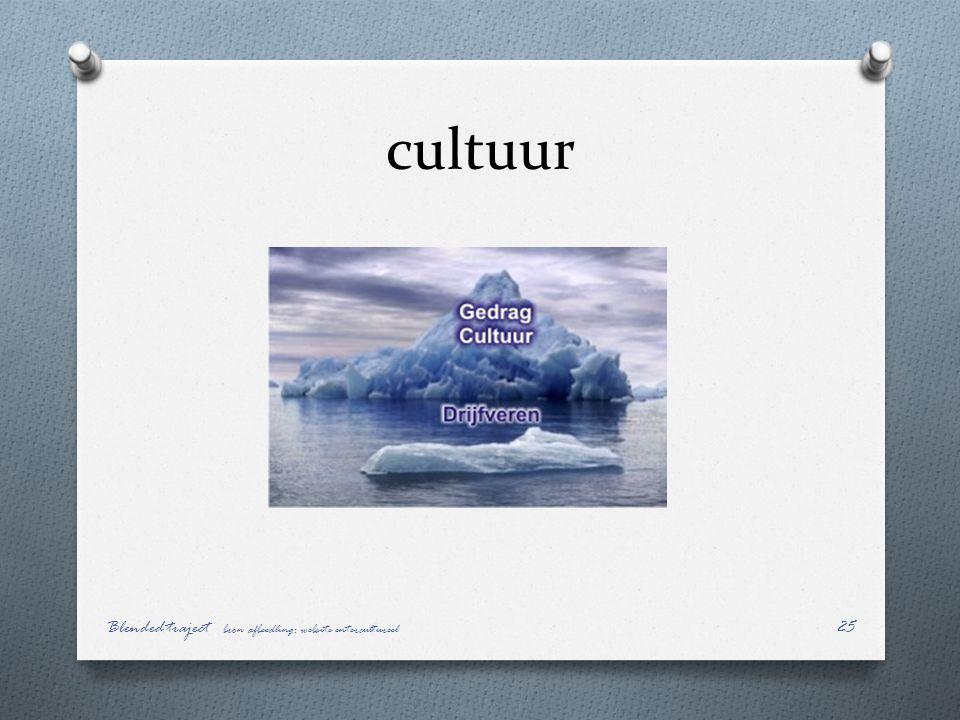cultuur Blended traject bron afbeedling: website entercultureel 25