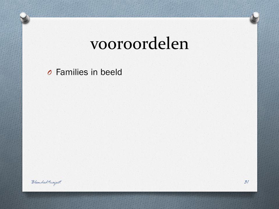 vooroordelen O Families in beeld Blended traject31